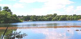 Aldenham Country Park